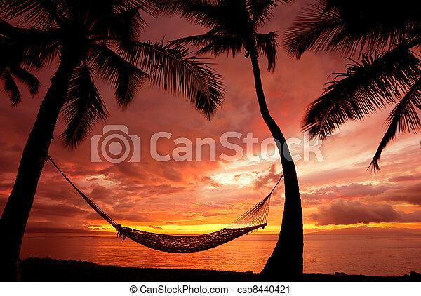 hermoso, silueta, vacaciones, árboles, hamaca, palma, ocaso - csp8440421