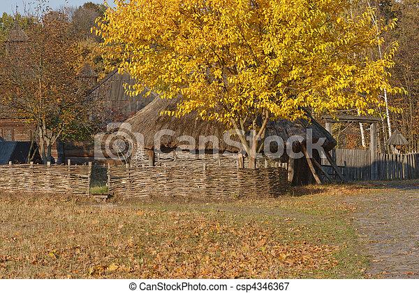 Vista del otoño. Una choza ucraniana con ese techo. Wattle. Hermoso árbol con hojas amarillas cerca de la cabaña. - csp4346367