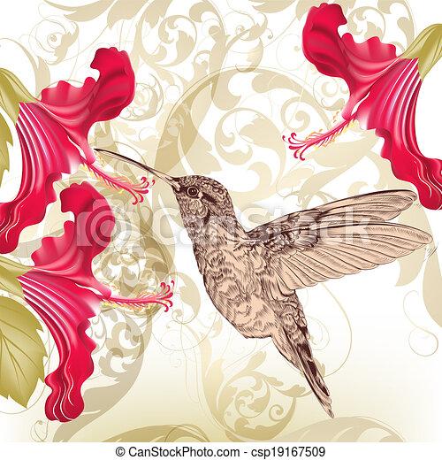 Hermoso fondo vectorial con colibrí y flores - csp19167509