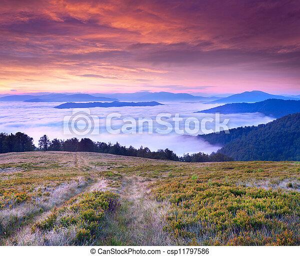hermoso, verano, nubes, pies, paisaje, debajo, montañas., salida del sol - csp11797586
