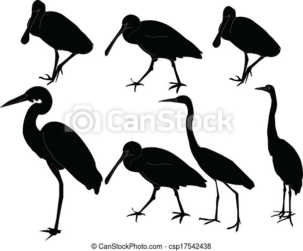 herons collection - vector - csp17542438