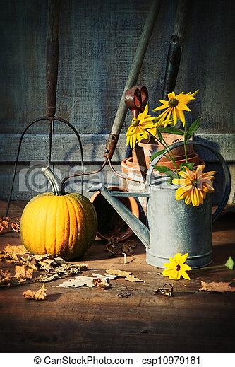 Un cobertizo con herramientas, calabaza y flores - csp10979181