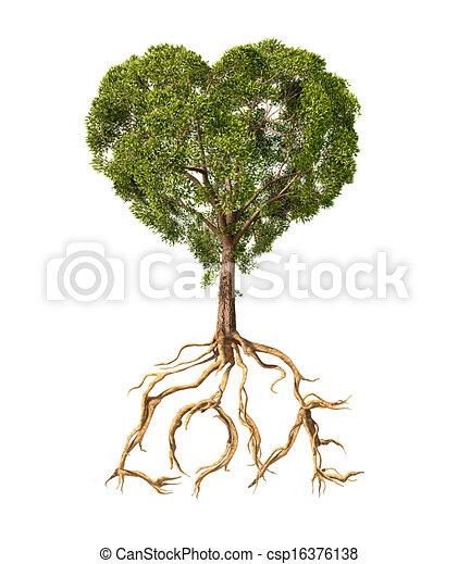 Tree mit Laub mit der Form eines Herzens und Wurzeln wie Text Love. Auf weißem Hintergrund. - csp16376138
