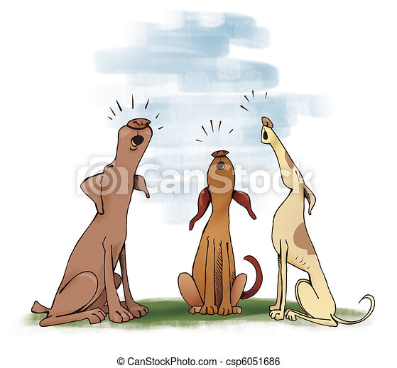 heulen, drei, hunden - csp6051686