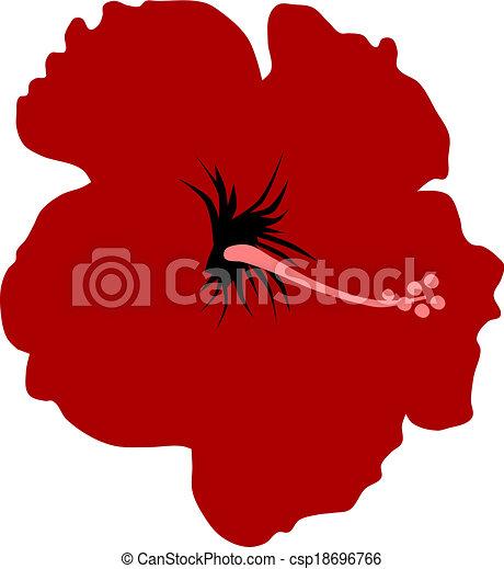 Hibiscus - csp18696766