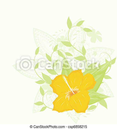 Hibiscus - csp6858215