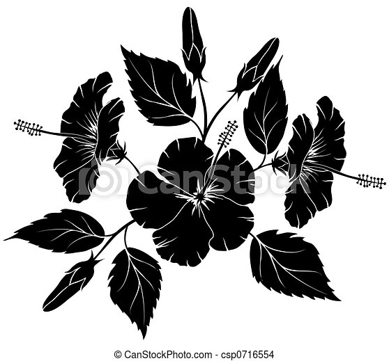 Stylique floral hibiscus illustration l ment dessin - Dessin d hibiscus ...