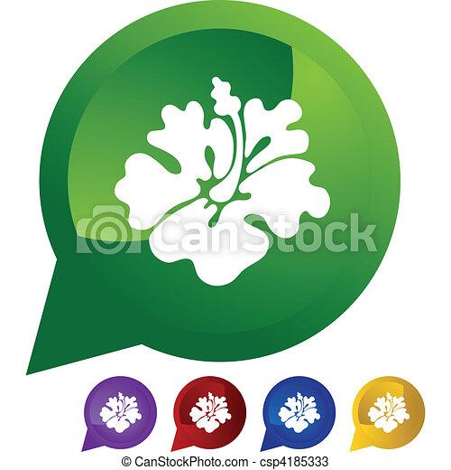 Hibiscus - csp4185333
