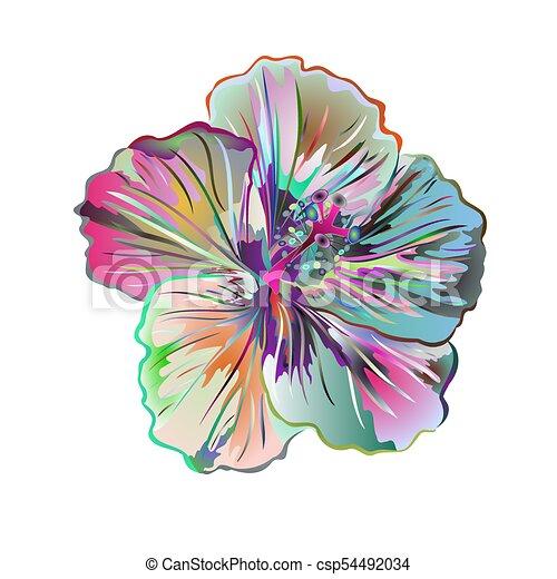 Hibiscus Fleur Colore Simple Beaucoup Saumon Vector Eps