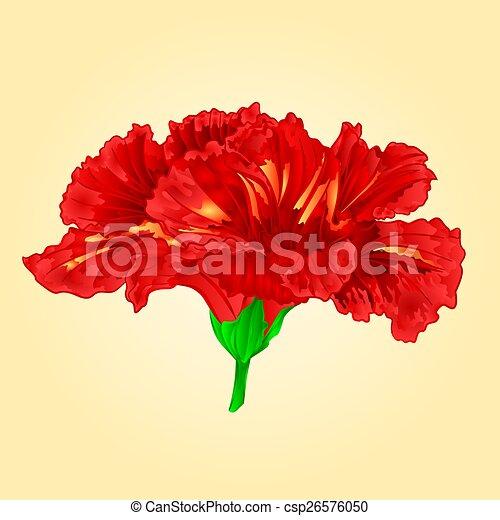 Hibiscus Fleur Fleur Rouges Simple Hibiscus Fleur Fleur