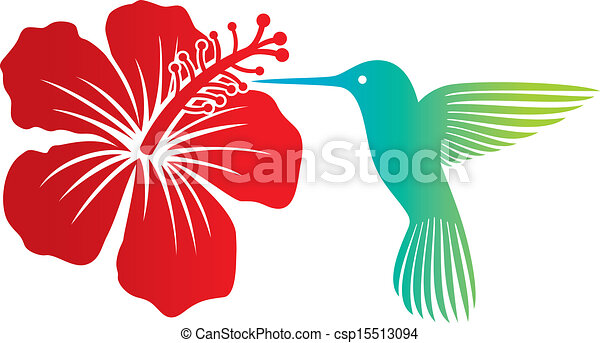 Hibiscus fleur rouges colibri hibiscus flower fleur - Dessin d hibiscus ...