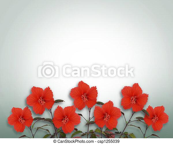 Hibiscus Flowers Border - csp1255039