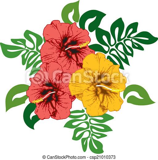 Hibiscus - csp21010373