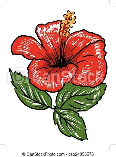 hibiscus - csp24056578