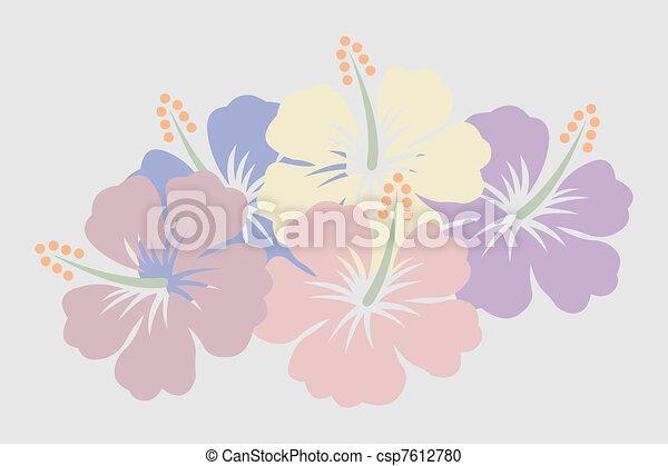 Hibiscus - csp7612780