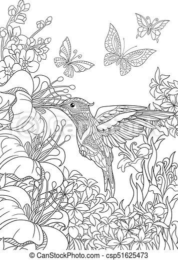 Hibiskus, vlinders, blumen, kolibri. Hibiskus, skizze, färbung ...