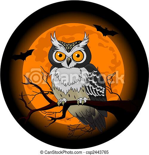 hibou, nuit - csp2443765