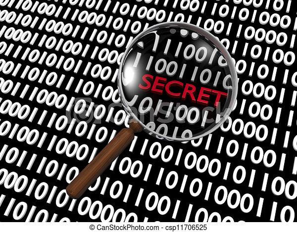 Hidden Numeric Secret - csp11706525