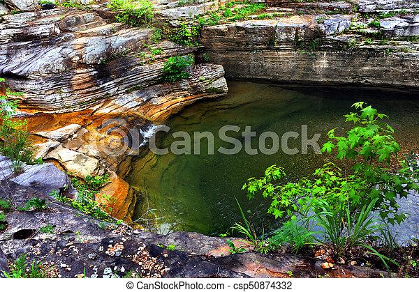 Hidden Pool - csp50874332