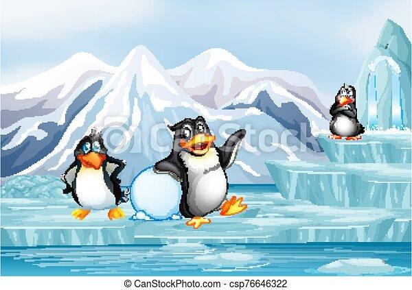 hielo, pingüinos, escena - csp76646322