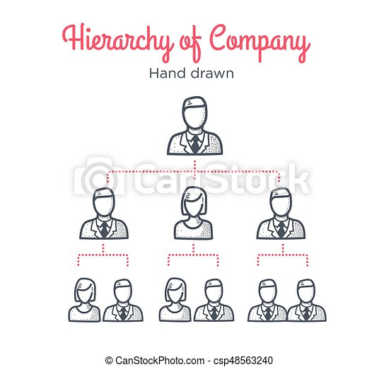 Hierarchy of company. Teamwork. Team tree. Management scheme. Human resources. Hand drawn illustration. Line icons. - csp48563240