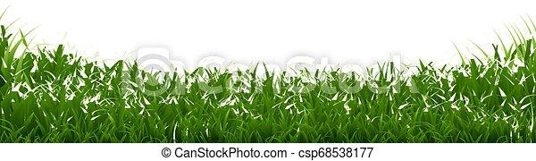 La frontera de la hierba verde - csp68538177