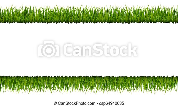 La frontera de la hierba verde - csp64940635