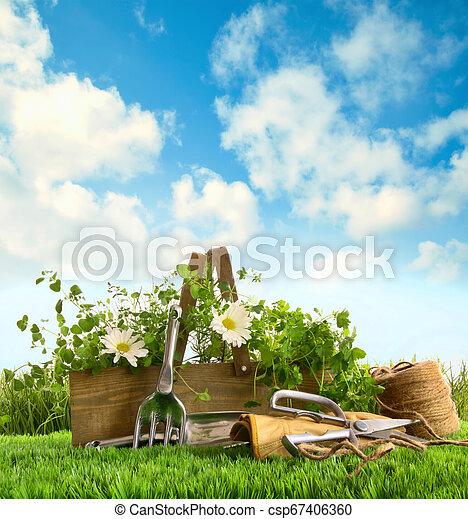 Hierbas frescas con herramientas de jardín en la hierba - csp67406360