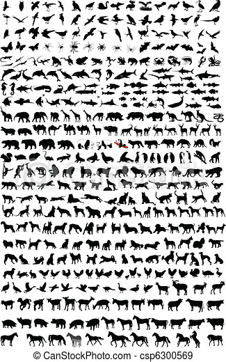 high quality animals silhouettes - csp6300569