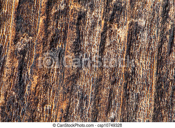 High Resolution Old Natural Wood Textures - csp10749328