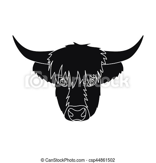 Scottish Highland Cattle On A White Background Stock Photo - Image of cows,  agriculture: 108733370