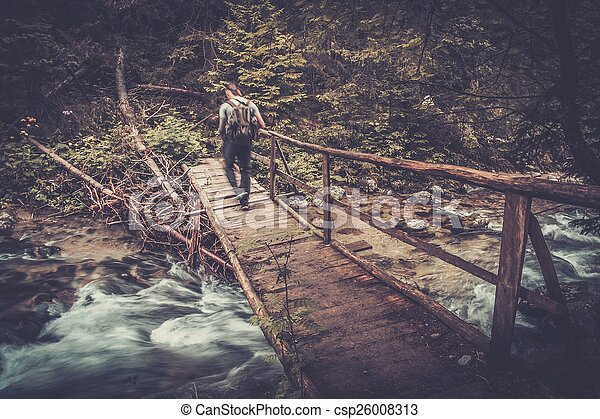 Hiker with hiking poles walking over wooden bridge in a forest - csp26008313