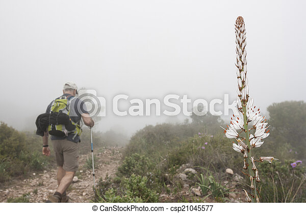 Hiking in the mountain - csp21045577