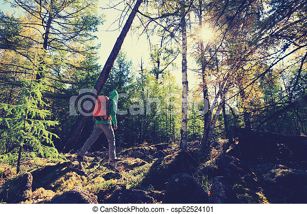 hiking woman with backpack in the sunrise forest - csp52524101