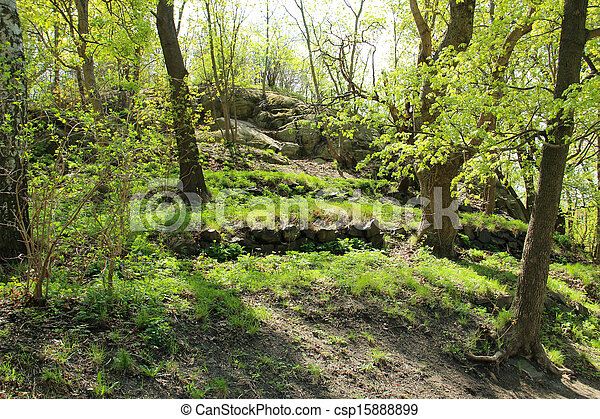 Hill in a park in early spring - csp15888899