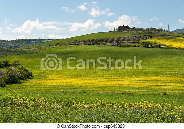 hill in Tuscany - csp6438231