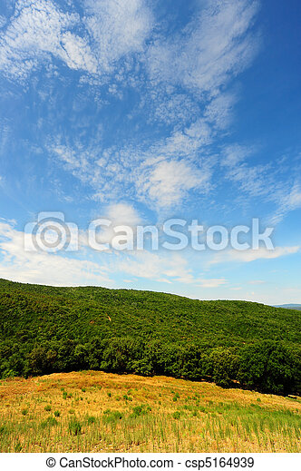 Hill In Tuscany - csp5164939