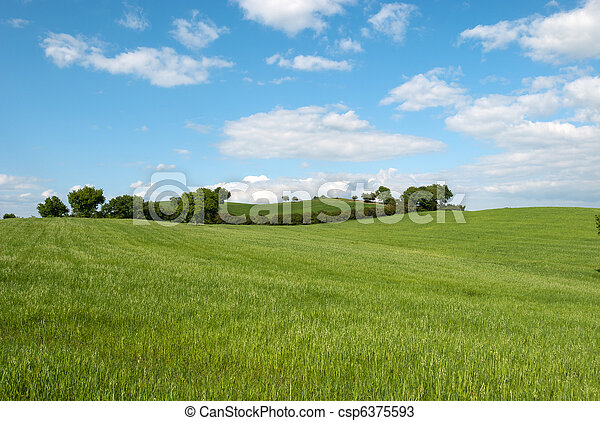 hill in Tuscany - csp6375593