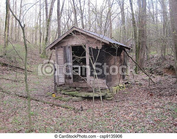 Hillbilly Shack In Arkansas Hillbilly Shack In The Woods