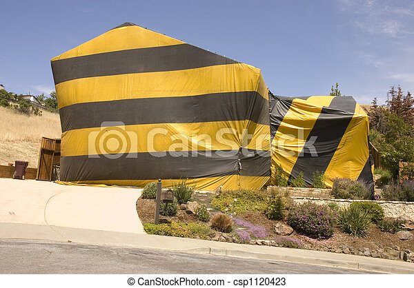 hilldie home tented for termite eradication - csp1120423