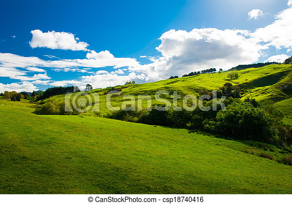 Hills of New Zealand - csp18740416