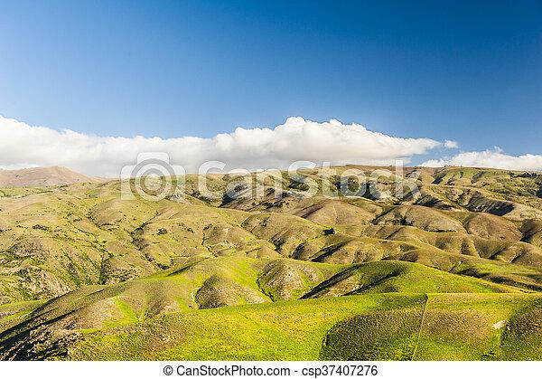 Hills of New Zealand - csp37407276