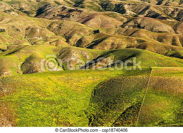 Hills of New Zealand - csp18740406