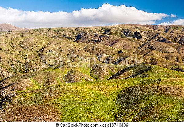 Hills of New Zealand - csp18740409