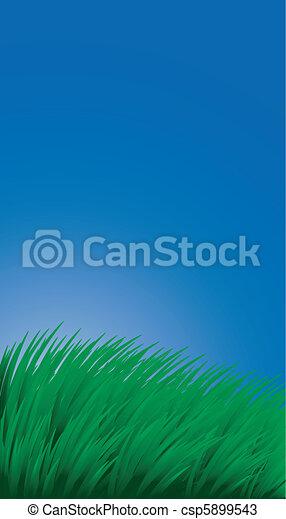 Hintergrund mit Gras und Himmel - csp5899543