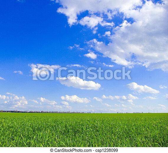 himmelsgewölbe - csp1238099