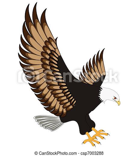 Fliegender Adler auf weißem Hintergrund isoliert - csp7003288