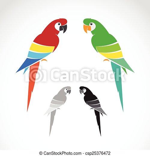 hintergrund., bild, vektor, weißes, papagai - csp25376472
