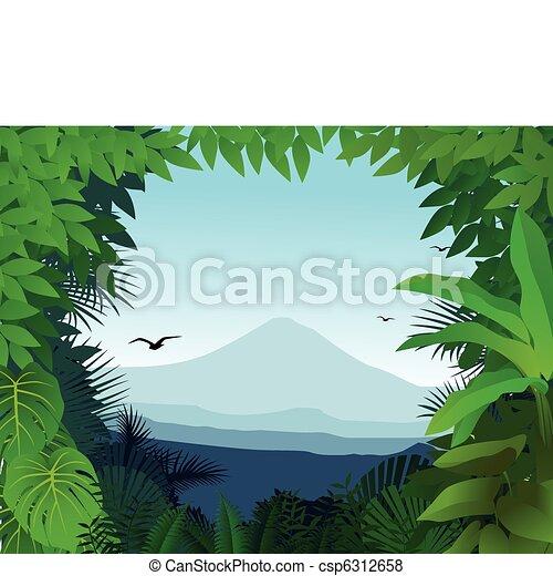 Natur Hintergrund - csp6312658