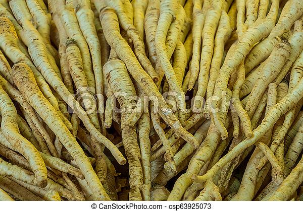 Root Petersilie Hintergrund weiße Wurzel viel Frucht vertikalen Muster leicht beige Textur - csp63925073